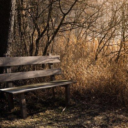 Kolik milenců sedělo na této lavičce? Toto místo už něco pamatuje...