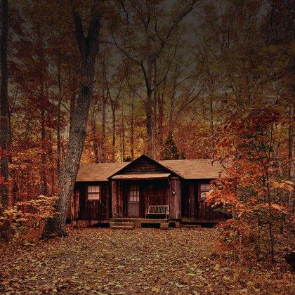 """Zde budeme trávit víkend. Nikde nikdo, jen chata a les, připomínající film """"The Evil Dead"""""""