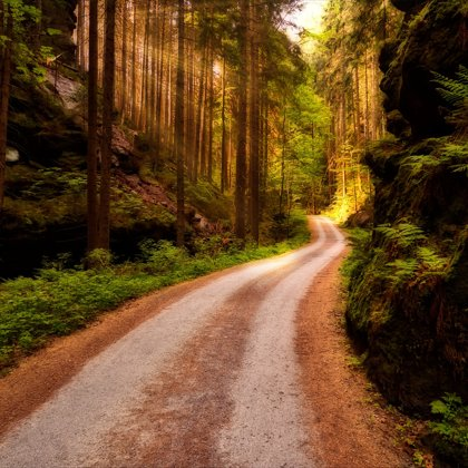 Na této cestě se kdysi dávno bojovalo. Z tohoto místa je cítit strach a smrt.