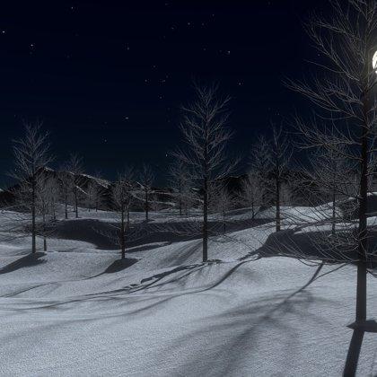 Velice řídký, přesto však úzkostlivě pochmurný les a sněhem zasypané pláně.