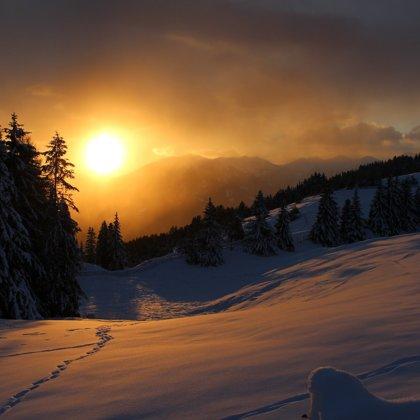 Všude samý mrazivý chlad. Stojíme před vysoko položenými a velmi zasněženými lesy.