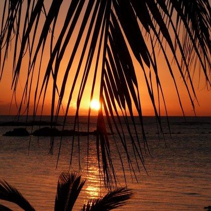 Právě pozorujete západ slunce. Sedíte pod palmou a dýchá na vás přímořská atmosféra.